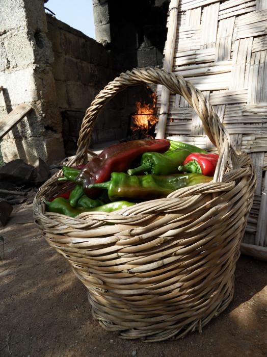 Food-Calabria-Foodfotograf-PascalKamber-4