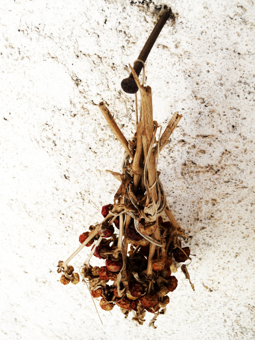 Food-Calabria-Foodfotograf-PascalKamber